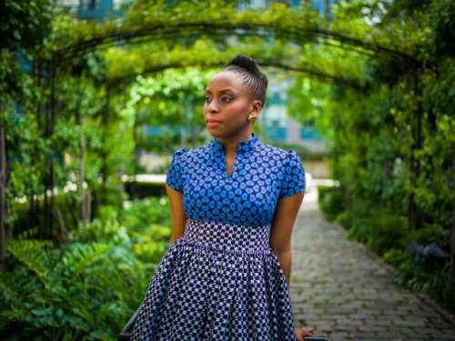 Chimamanda Ngozi Adichie (shot by Ian Williams for The National Post, via Brittle Paper)
